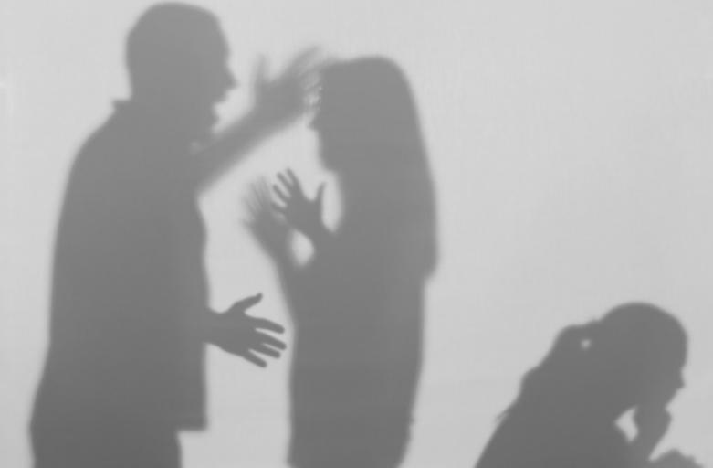 «Η ενδοοικογενειακή βία κατά τη διάρκεια της πανδημίας – ευαισθητοποίηση και ενημέρωση, ανταλλαγή βέλτιστων πρακτικών»